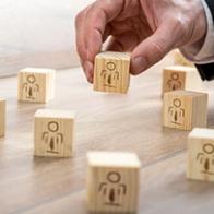 Management Formation